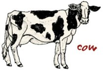 COW copy