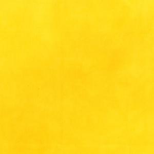37098-46 Daffodil